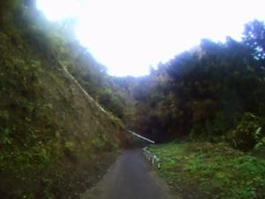 Cut2011_1120_2328_49