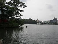 P1010027_4