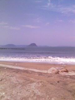 唐津湾を望む