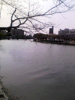広島にいます
