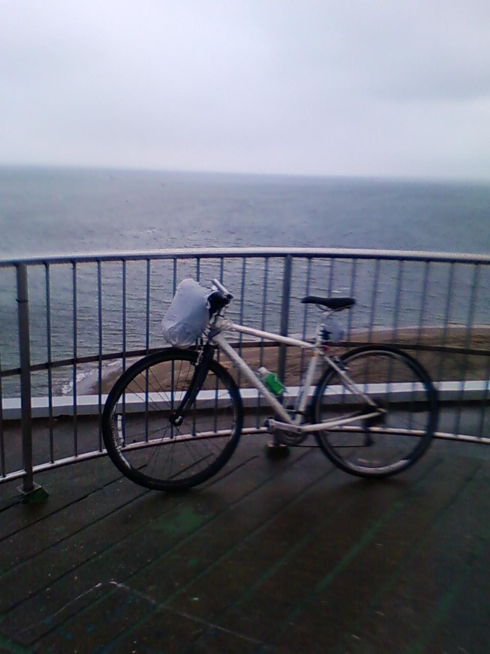 富津岬に立った