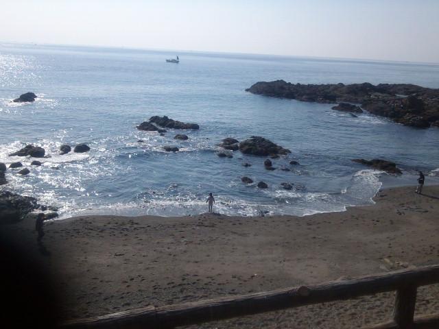 三浦半島は暖かい