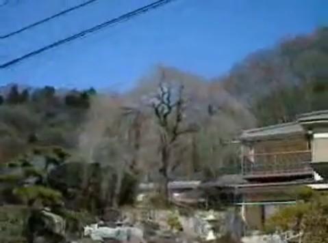 Cut2011_0227_0902_06