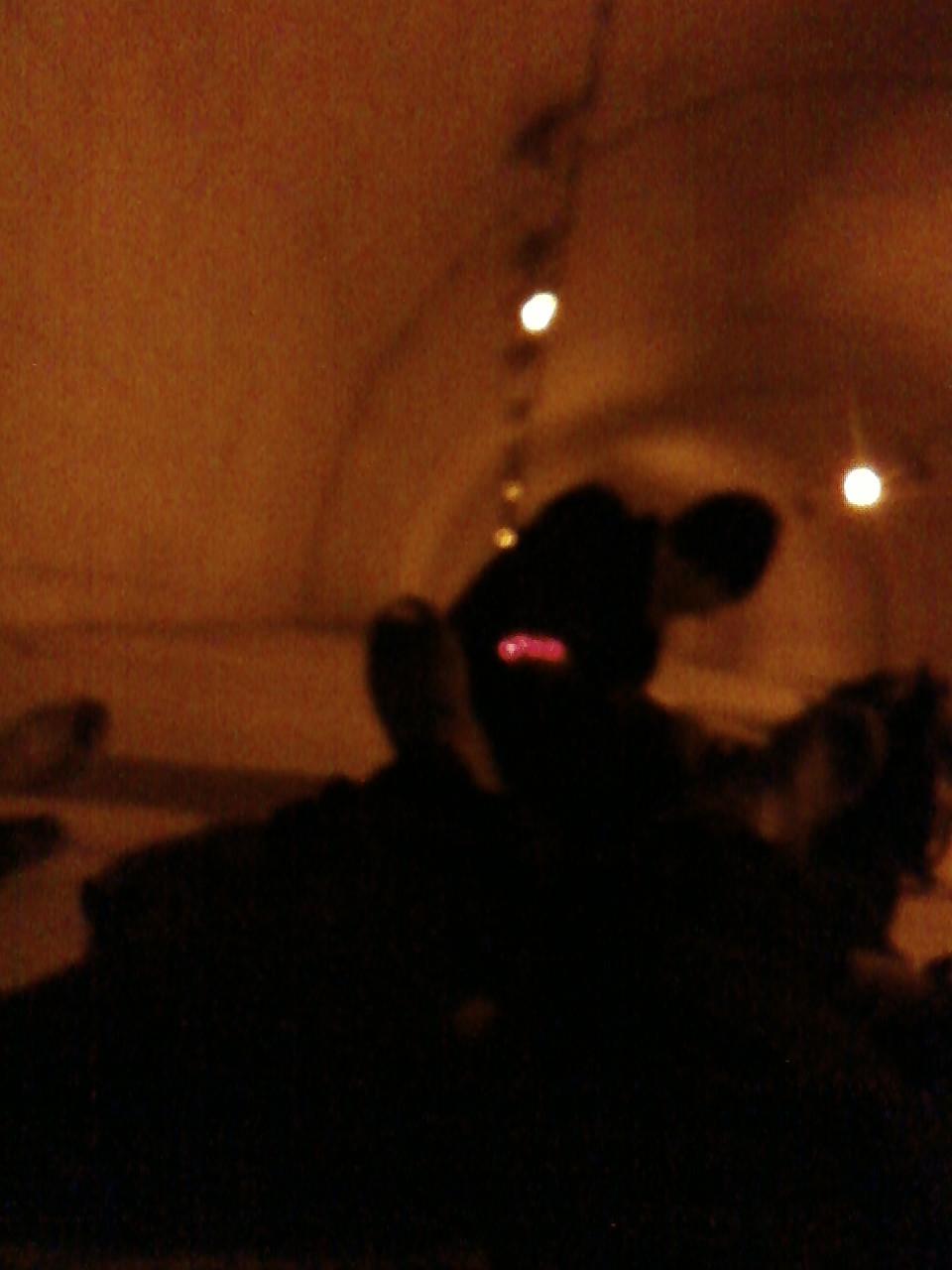 トンネルスリーピング
