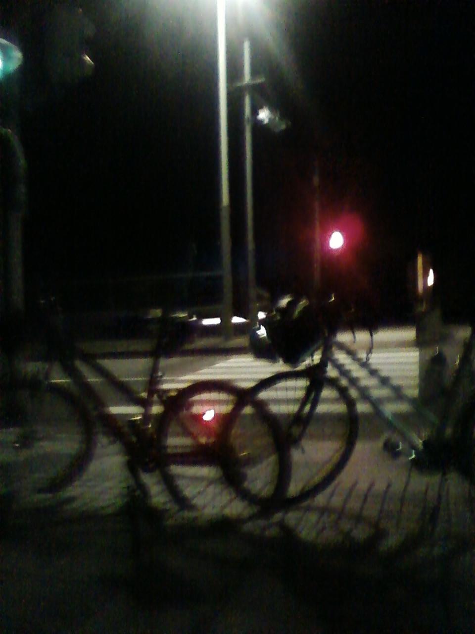 狛江の橋からスタート