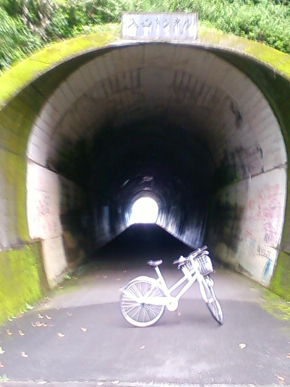 入山トンネル通過