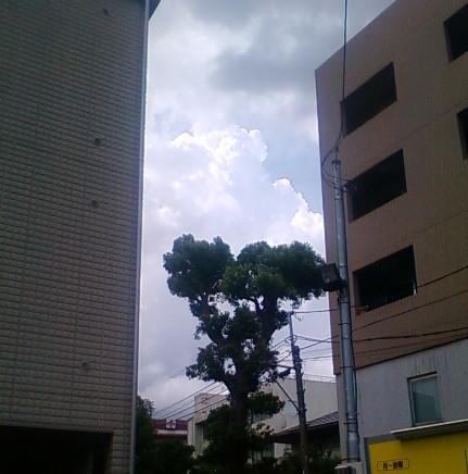 Cut2011_0902_1655_10
