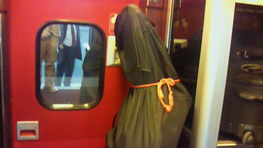 Paris NORD駅から爆裂TGV<br />  のTHALYSにのりこんで!