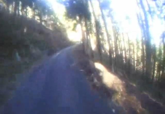 Cut2011_1222_1746_26