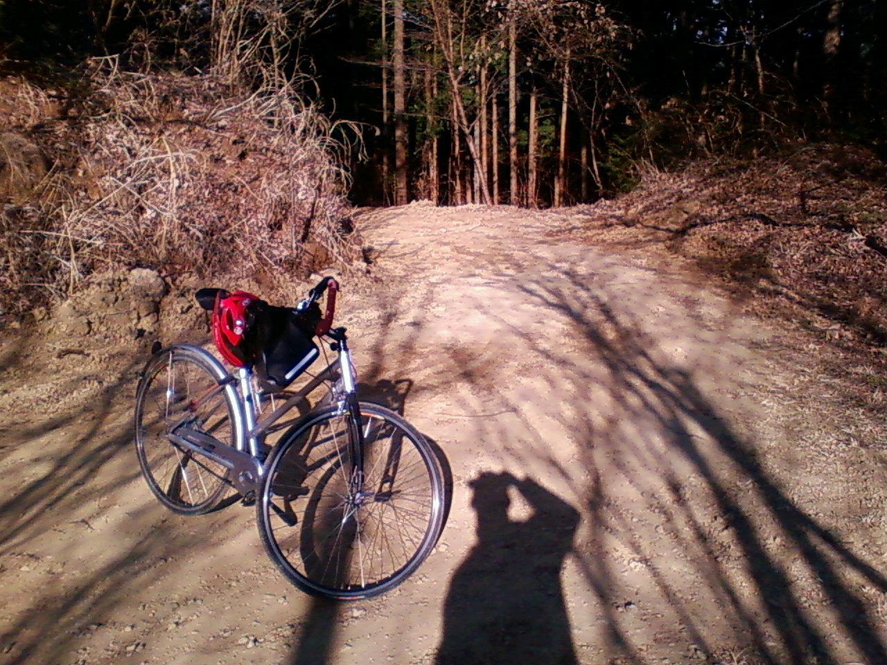 日の出登山道から焼き岩林道へ