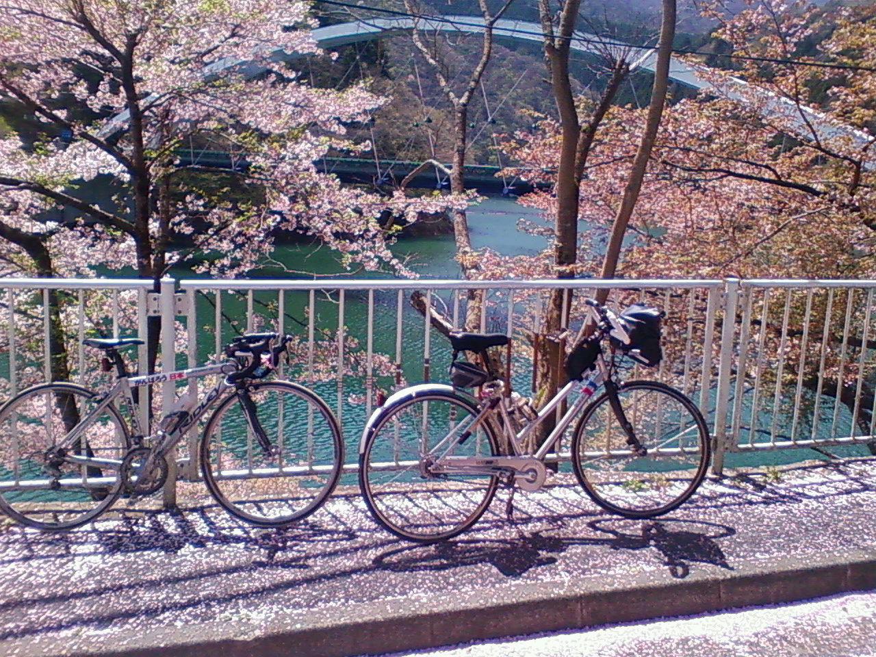 風張林道を登頂して小菅村へ